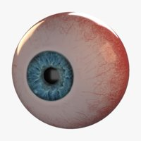 3D photorealistic human eye eyeball iris model
