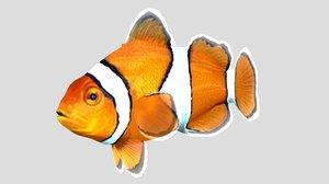 3D clownfish tropical fish