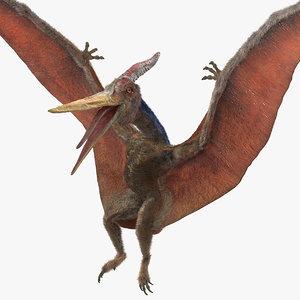 pteranodon fur landing pose 3D model