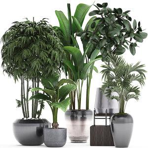 3D ornamental plants exotic