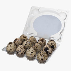 quail eggs open box model