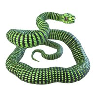 boomslang snake reptile animation model