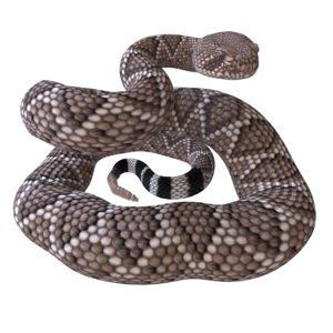 rigged western diamondback rattlesnake 3D