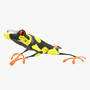 3D tree frog rigged animation