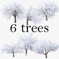 3D model cherry winter pack tree snow