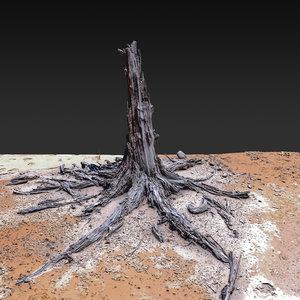 3D desert tree standing 04