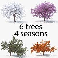cherry seasons pack tree 3D model