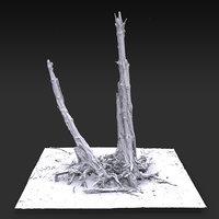 Desert Tree standing 05 3D Scan 3D model