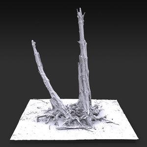 desert tree standing 05 model
