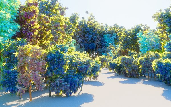 bamboo forest pack 10 3D model