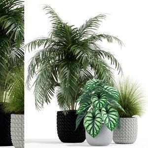 plants 138 3D model