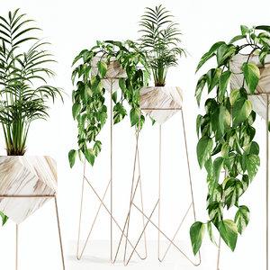 plants 140 3D model