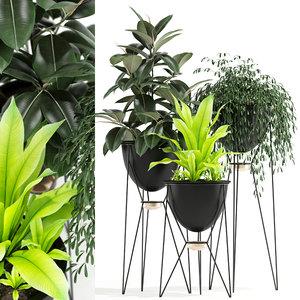 3D plants 141 madre selva model