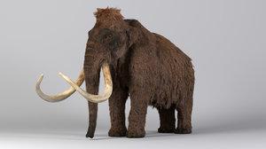 3D mammoth tusks