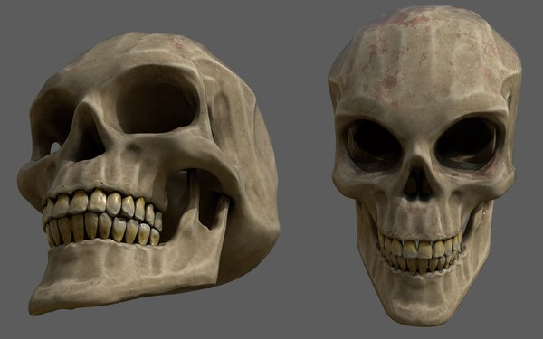3D model stylized human skull