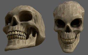 3D model stylized human skull