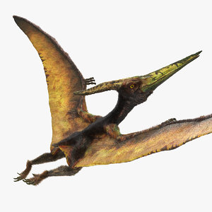 pteranodon flying carnivorous reptile model