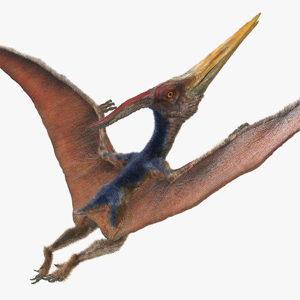 pteranodon flying pose fur 3D model
