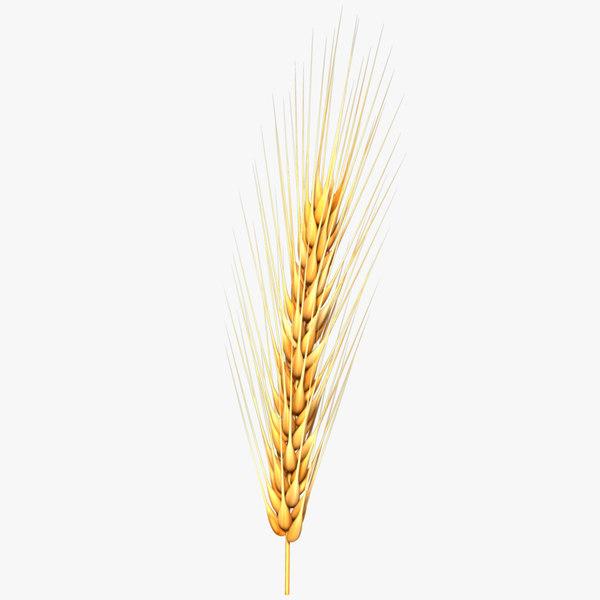 wheat cnc printing 3d c4d