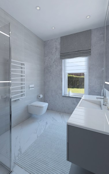 shower room 3D