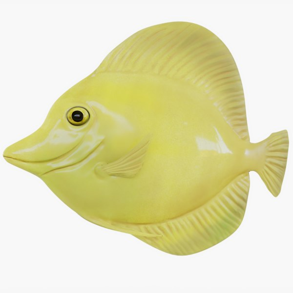 3D yellow tang animations