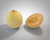 melon 3D model