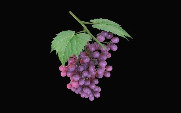 grape 3D
