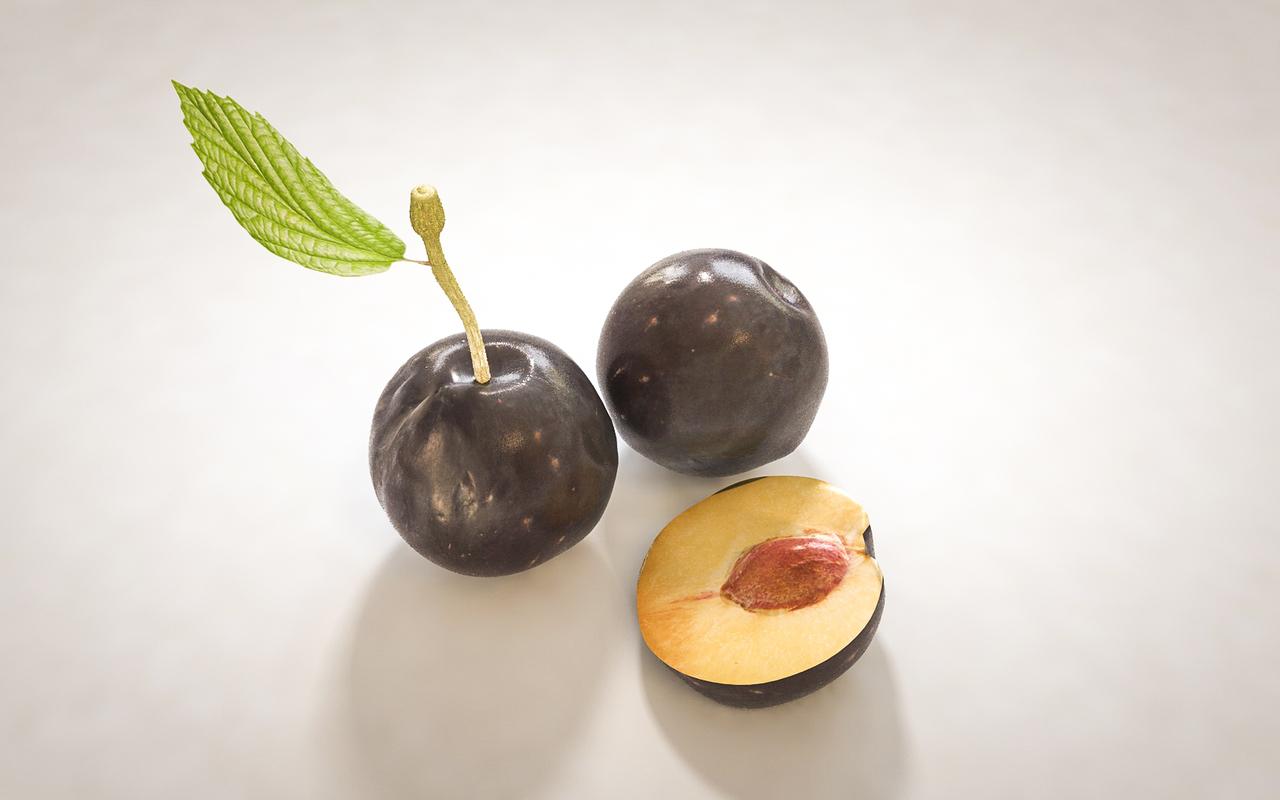 3D cocoa fruit model