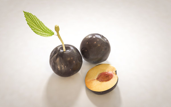3D cocoa fruit model