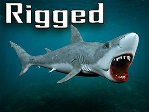 rigged white shark 3D