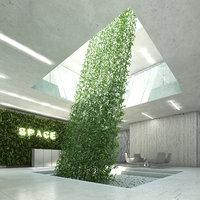 plant epipremnum aureum 3D