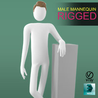 male mannequin rigging 3D model