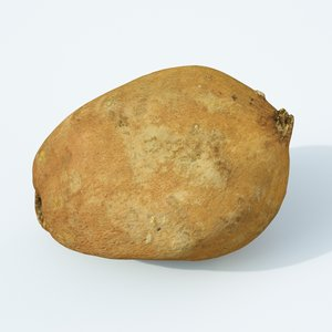 sweet potato 3D model