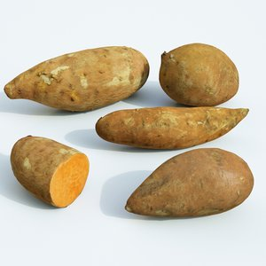 sweet potato set 3D