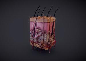 3D skin histologically subcutaneous