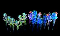 Glowing Flower Animated