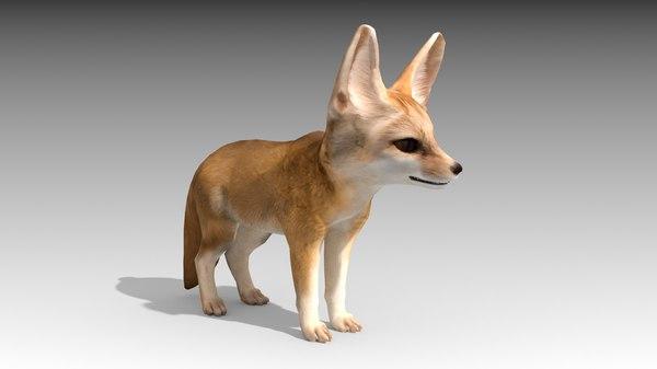3D mammal fox model