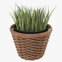 real pot plant model