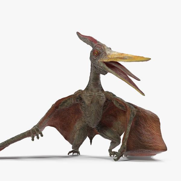 3D model pteranodon standing pose