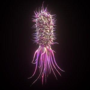 e coli 3D model