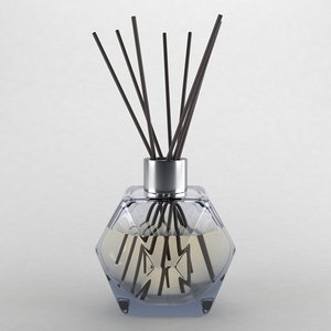 reed diffuser type2 3D model