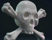 3D model skull relief