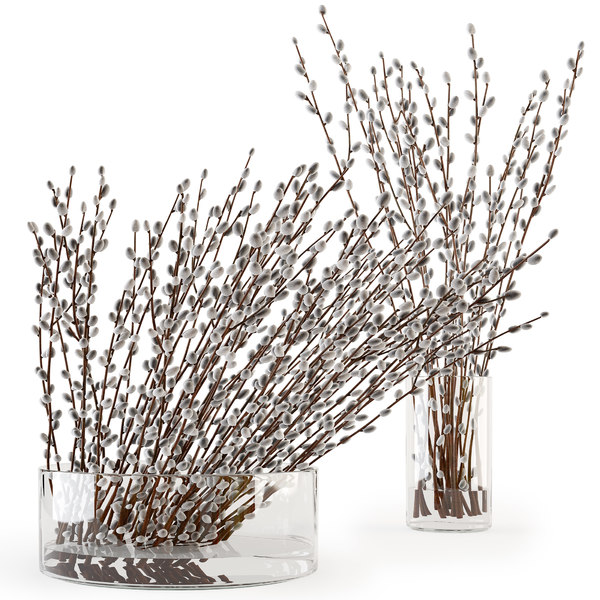 willow branches glass vase 3D model