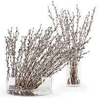 Branches in a vase 006