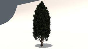 cypress oak tree model