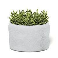 3D small plant stone pot model