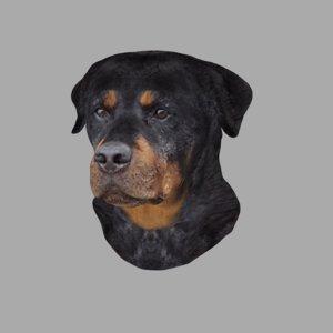 wall mount rottweiler dog 3D