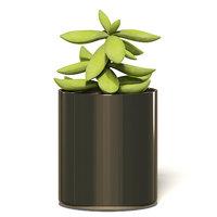 plant metal pot model