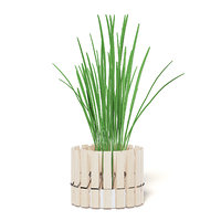 3D plant pot clothes pegs model