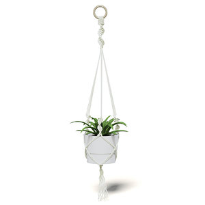 3D plant white hanging pot model